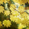 Leaf Zen T by Rebecca Cozart