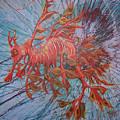 Leafy Sea Dragon by Lawry Love