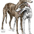 Lean On Me - Greyhound Dogs Print Color Tinted by Kelli Swan
