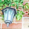 Leave The Porch Light On by Traci Cottingham