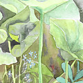 Leaves by Yana Sadykova