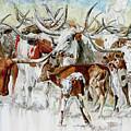 Legacy Of The Longhorn by Daniel Adams