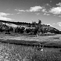 Legend Of The Bear Wyoming Devils Tower Panorama Bw by Thomas Woolworth