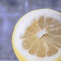Lemon Half by Edward Fielding