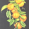 Lemon Mandarine Suite by Janet Summers-Tembeli