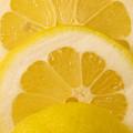 Lemon by Robin Lynne Schwind