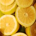 Lemon Still Life by Jill Reger