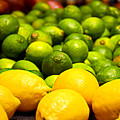Lemons And Limes by Robert Meyers-Lussier