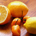 Lemons And Peppers by Jeffrey Kolker
