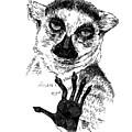 Lemur by Masha Batkova