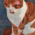 Leo The Cat by Lizzie Joy Lukens