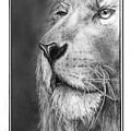 Leo The King by Trey McCoy