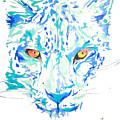 Leopard  by Adriano Diana