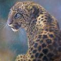Leopard by Iliyan Bozhanov
