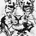 Leopard by Jamey Balester
