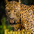Leopard Nature Girl by LeeAnn McLaneGoetz McLaneGoetzStudioLLCcom