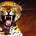 Leopard by Paul Dene Marlor
