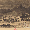Les Anes De La Butte-aux-cailles (donkeys At La Butte-aux-cailles) by F?lix-hilaire Buhot