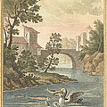 Les Poissons Et Le Cormoran (the Fish And Thecormorant) by Quentin-pierre Chedel After Jean-baptiste Oudry