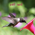 Lessons From Nature - Eat Well by Carol Groenen