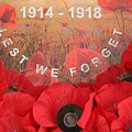 Lest We Forget - 1914-1918 by Travel Pics