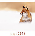 Let It Snow 2 - New Years Card Red Fox In The Snow by Roeselien Raimond