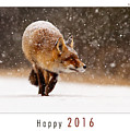 Let It Snow 4 - New Years Card Red Fox In The Snow by Roeselien Raimond