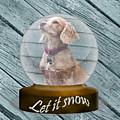 Let It Snow by Terri Waters