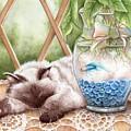 Let Sleeping Cats Lie by Lisa George