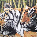 Let Sleeping Tigers Lie by Susan Moyer