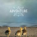 Let The Adventure Begin by Jai Johnson
