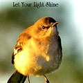 Let Your Light Shine by Lisa Renee Ludlum