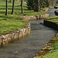 Letort Spring Run by Jean Macaluso