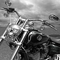Let's Ride - Harley Davidson Motorcycle by Gill Billington