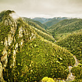 Leven Canyon Reserve Tasmania by Jorgo Photography - Wall Art Gallery