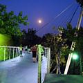 Liberty Bridge At Night Greenville South Carolina by Flavia Westerwelle