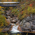 Liberty Gorge And Sentinel Pine Bridge by Juergen Roth