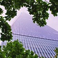Liberty Tower Framed By Trees by Marcus Dagan