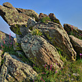 Lichen Covered Boulders Along Mt. Evans Highways by Ray Mathis