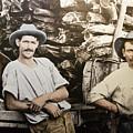 Life In Australia 1901 To 1914 by Miroslava Jurcik
