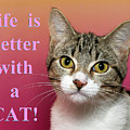 Life Is Better With A Cat by Sheila Fitzgerald