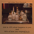 Life Is More Than Chemicals by Thomas Woolworth