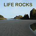 Life Rocks by Gallery Of Hope