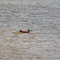 Lifeguard Training by Gillian Lovett