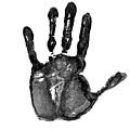 Lifeline - Free Hand by Michal Boubin