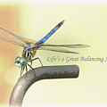 Life's A Great Balancing Act by Ola Allen