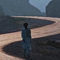 Life's S Curves by Syed Muhammad Munir ul Haq