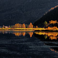Light And Shadows by Rune Askeland