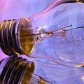 Light Bulb - Multi Color by Douglas Milligan