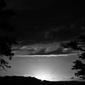 Light by Derek Palmer